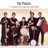 If I Should Fall from Grace With God [Expanded], The Pogues