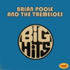 Brian Poole & The Tremeloes: Big Hits, Brian Poole & The Tremeloes