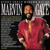 Imagem em Miniatura do Álbum: Every Great Motown Hit of Marvin Gaye