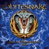 Live At Donington 1990, Whitesnake