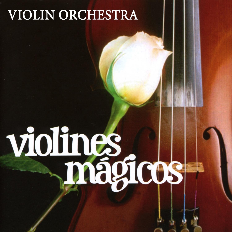 Огненно-пиротехническая программа magic violine