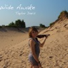 Wide Awake (Violin Version) - Single, Taylor Davis