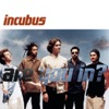 Are You In? - Single, Incubus