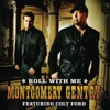 Roll With Me feat Colt Ford Single