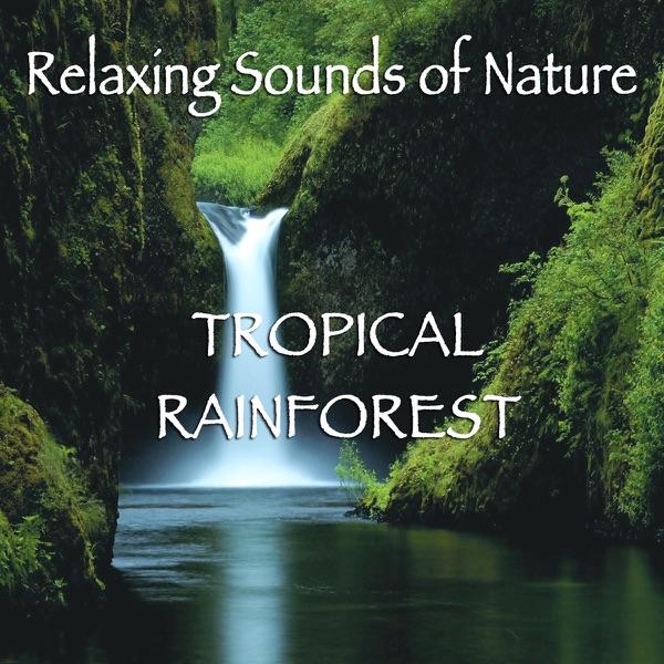 Best Nature Sounds Cd