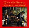 Whenever We Wanted (Remastered), John Mellencamp