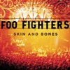 Skin and Bones (Live), Foo Fighters