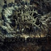 Reign of Darkness - Single, Thy Art Is Murder