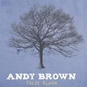 Ashes - Andy Brown