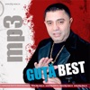 Best Of, Nicolae Guta
