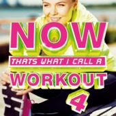 NOW That's What I Call a Workout 4 - Various Artists