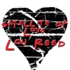 Satellite Of Love, Lou Reed