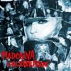 Celebration (Remixes), Madonna