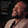 Marvin Gaye: Songbook, Marvin Gaye