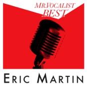 MR.VOCALIST BEST