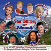 Star Edition der Volksmusik Vol. 2