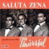 Saluta Zena: i grandi successi del Trio Universal, Trio Universal
