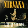 Nirvana: Live At Reading, Nirvana
