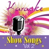 Karaoke - Show Songs, Vol. 2