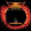 I Don't Want to Miss a Thing - EP, Aerosmith