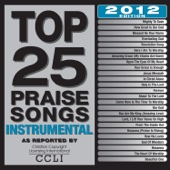 Top 25 Praise Songs Instrumental - 2012 Edition