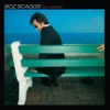 Silk Degrees, Boz Scaggs