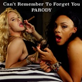 Can't Remember to Forget You Parody