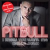 I Know You Want Me (Calle Ocho) [Alex Gaudino & Jason Rooney Remix] - Single, Pitbull