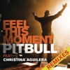 Feel This Moment (Remixes) [feat. Christina Aguilera] - EP, Pitbull