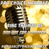 Sing the Hits of the Red Hot Chili Peppers (Karaoke Version) [Originally Performed By the Red Hot Chili Peppers]