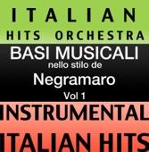 Basi Musicale Nello Stilo dei Negramaro (Instrumental Karaoke Tracks) Vol. 1