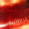 Imagem em Miniatura do Álbum: Kiss Me, Kiss Me, Kiss Me