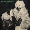 Buy Machineries of Joy by British Sea Power on iTunes (Alternative)