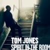 Spirit in the Room (Deluxe Edition), Tom Jones