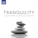 Tranquility - Soothing Classical Music