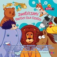 Slon - Rafal Brzozowski