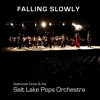 Falling Slowly (feat. David Osmond and Jessie Funk) - Single, Nathaniel Drew & Salt Lake Pops Orchestra