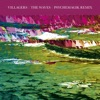 The Waves (Psychemagik Remix) - Single, Villagers