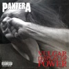 Vulgar Display of Power (Deluxe Video Version), Pantera