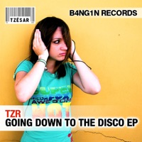 DJ TZR - Going Down to the Disco