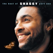Boombastic - Shaggy Cover Art