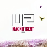 Magnificent (Remixes) MP3