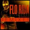 Wild Ones (feat. Sia) [Remixes] Pt. 2 - EP, Flo Rida