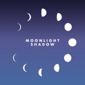 Moonlight Shadow (Remix) [Radio Edit]
