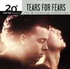 Imagem em Miniatura do Álbum: 20th Century Masters - The Millennium Collection: The Best of Tears for Fears