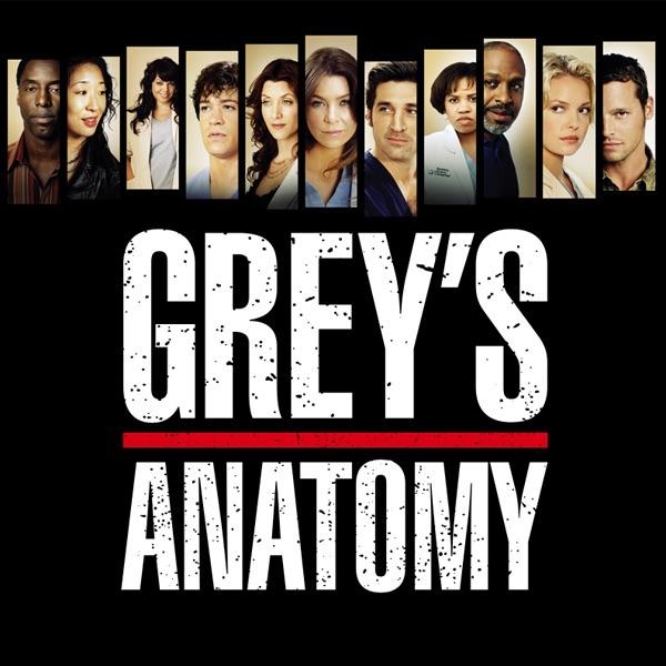 """Grey's Anatomy, Staffel 3"" In ITunes"