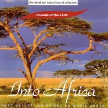 The David Sun Natural Sound Collection: Sounds of the Earth - Into Africa, Sounds of the Earth