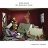 Buy The Destroyed Room by Sonic Youth on iTunes (Alternative)