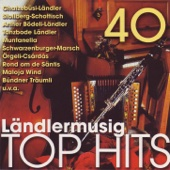 40 Ländlermusig Top Hits