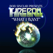 What I Want - Single